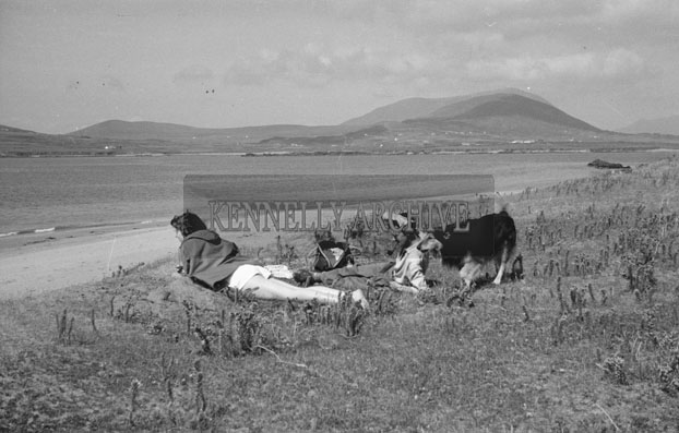 1953; A Couple Enjoying Themselves Near The Beach With Their Dog On Valentia Island.