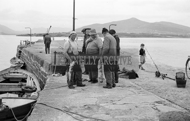 1953; A Photo Of Fishermen With Their Catches At Valentia Pier.