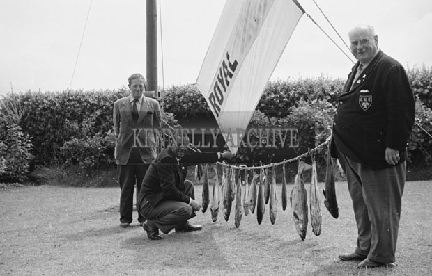 1953; A Photo Of Three Men Posing For The Camera With A Line Of Fish On Valentia Island.