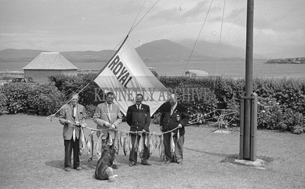 1953; A Photo Of Four Men Posing For The Camera With A Line Of Fish On Valentia Island.