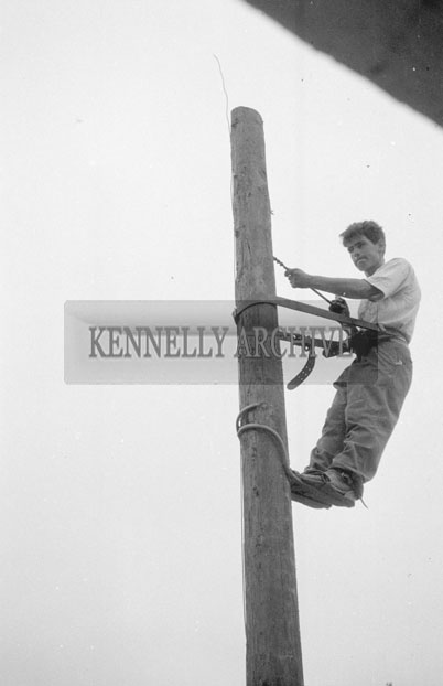 1953; A Photo Of A Man Up An Electricity Pole At Valentia Island.