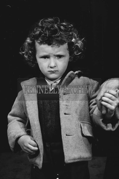 1953; A Studio Photo Of A Young Boy.