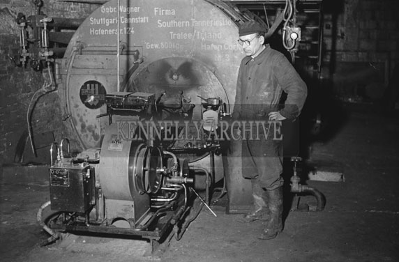 February 1954; An Employee Of Tralee Tannery At Work