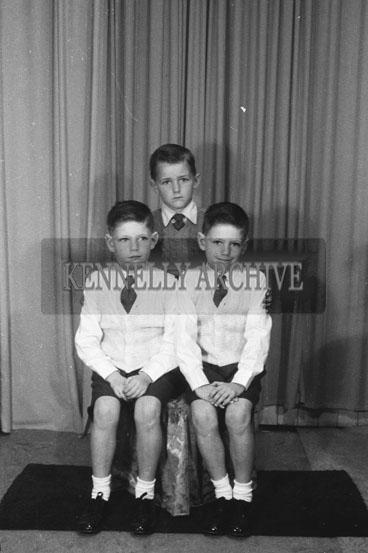 June 1954; A Studio Photo Of Three Communion Boys.