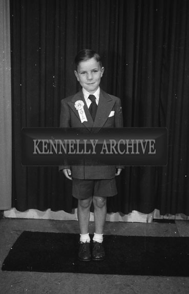 June 1954; A Studio Photo Of A Communion Boy.