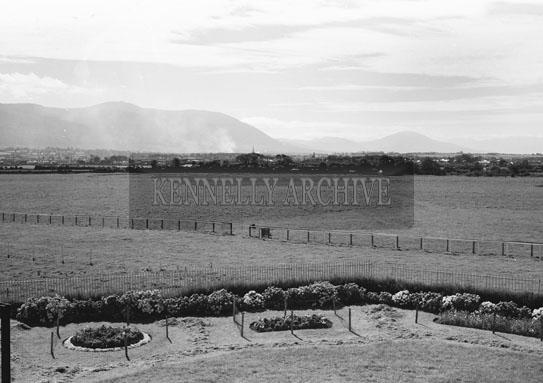 August 1954; Ballybeggan Racecourse, Tralee.