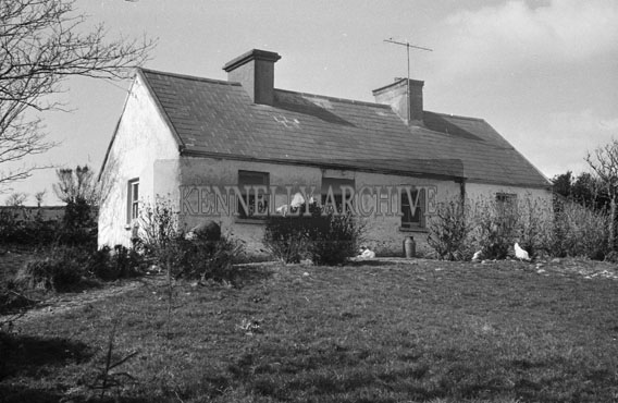 1956; A House In Kerry.