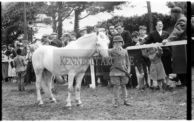 29th-31st May 1956; A photo taken at the Show Jumping events which took place at the Kingdom County Fair in Tralee.