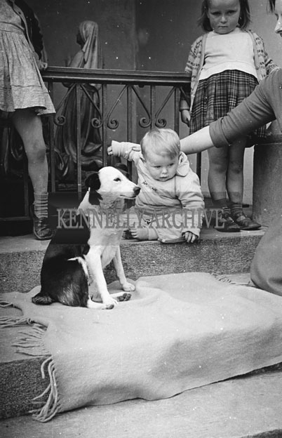 6th May 1957; Mrs. O'Keefe, Chemist, Dingle, with her children and dog on the steps of the church in Dingle.