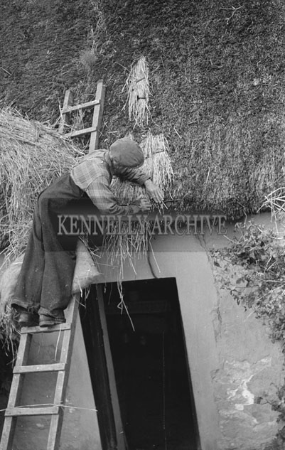 August 1957; A photo of a man thatching a cottage roof in Tralee Road, Ballyheigue.