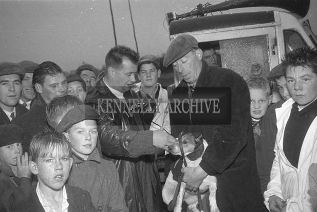 October 1957; Jackie Daly (with microphone) presents the prizes at a terrier race held during Castleisland Carnival.