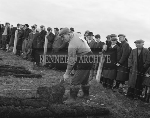 18th February 1962; One of the turfcutters at the Taodh Fhod Munster Championship which took place in Duagh where M O'Connor was crowned the winner.
