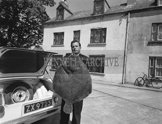 May 1962; Michéal Keane with a large Flounder fish which was caught in Valentia.
