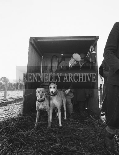 18th December 1962; A photo taken at a Coursing Event which took place in Castleisland.