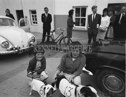 5th September 1962: A photo taken during the Terrier Derby which took place in Rock Street during the Festival of Kerry.