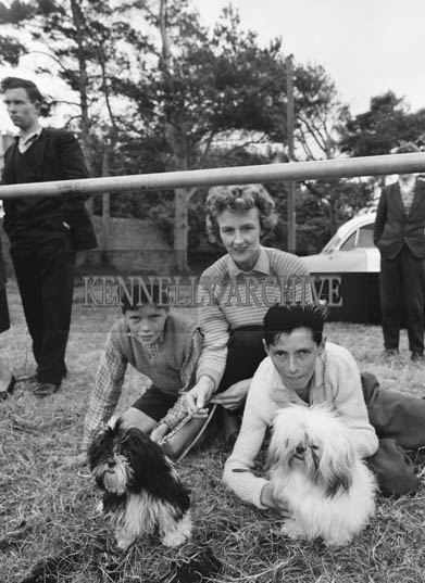 26th/28th May 1964; A photo taken at the Showjumping Events at the Kingdom County Fair in Tralee.