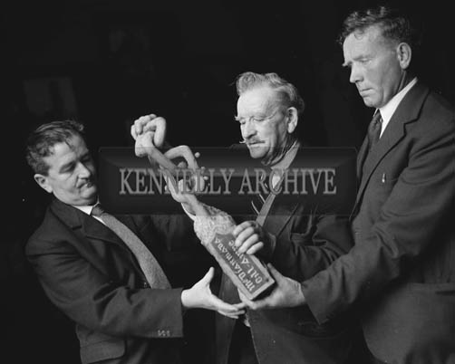 14th June 1964; Three men with the McDermot Chain of Life in Muckross House, Killarney on the day the house opened to the public for the first time since the Elizabethan Mansion was handed over to the State by Mr Bowers Bourne and his son-in-law Mr Arthur Vincent in 1932.