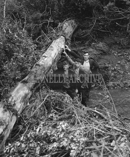20th July 1964; A photo taken near the waterfall in Kilflynn after a cloudburst in the area caused flooding.