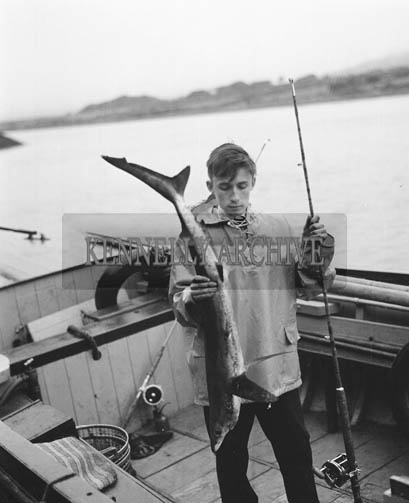2nd August 1964; A photo of a competitor with his catch at a spearfishing competition in Valentia.