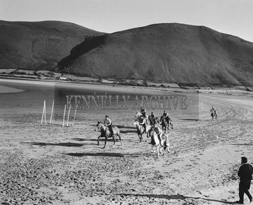 August 1964; A photo of horses galloping on the beach at Rossbeigh.