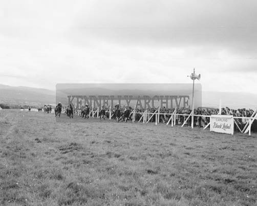 1st-3rd September 1964; A photo of a Horse Race at Ballybeggan Park, Tralee.