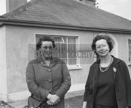 19th March 1964; A photo of Miss Leslie Turketine (left), secretary of the Kerry Branch of the NSPCA, with Mrs. Pat Smith, Ballyard, Tralee. The NSPCA was seeking to have donkey racing controlled following the discovery of several forms of cruelty to racing animals during derbys.