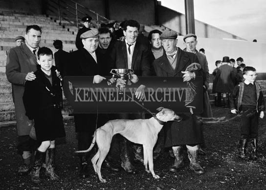 1st December 1964; 'The Jint', owned by Moss Brennan, won the Listowel Cup and £200 prize money.