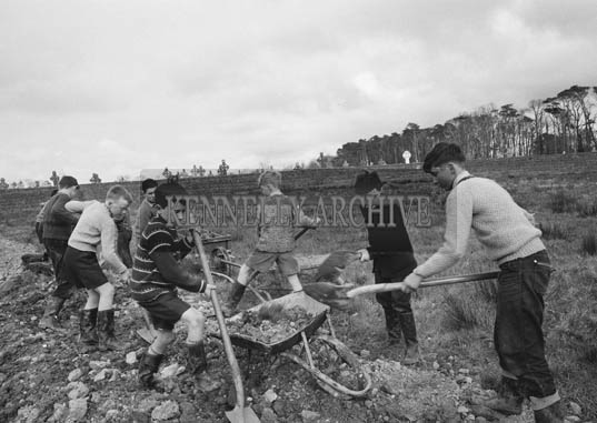 11th April 1964; Pupils of Listowel Boys National School digging a drain on their sportsfield. The field had been waterlogged for most of the preceding year so the boys decided to install a drainage scheme. They did all the work themselves on Saturday, 11th April.