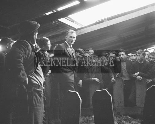 April 1964; Students from the Technical School, Tralee, visit a farm.