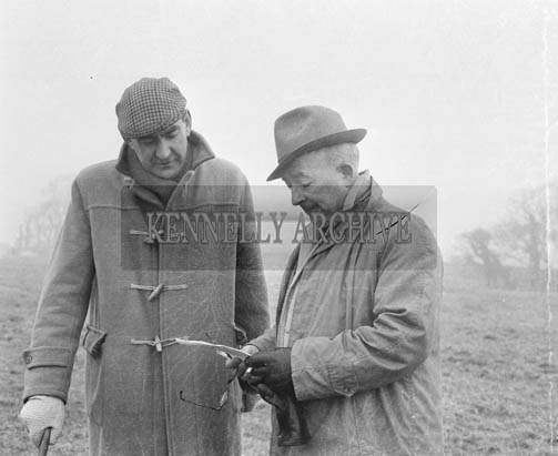 29th December 1964; Joe Grace (left) and Paddy O'Sullivan at the Kingdom Cup coursing meeting in Ballybeggan Park, Tralee.