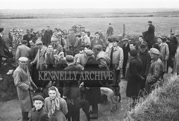 10th January 1954; A Group Shot At The Kerries And Knockanish Silver Jubilee Open Coursing Day.