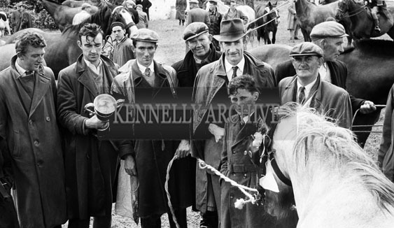 June 1962; A photo taken during the Showjumping events which took place at the Kingdom County Fair at the Ballymullen Barracks in Tralee.