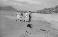 1953; Four Ladies Enjoying Themselves On The Beach With Their Dog On Valentia Island.
