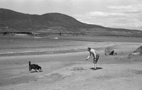 1953; A Man Playing With A Dog On The Beach On Valentia Island.