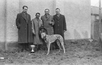 26th-28th December 1953; Four men with a winning dog in Ballybeggan Park during the Kingdom Cup coursing meeting.