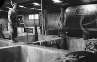 Tralee Tannery