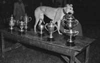 Spanish Battleship Greyhound