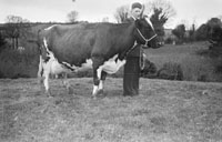 Cahill Farm