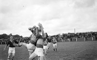 Feale Rangers Vs. John Mitchels