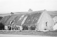 A Man Thatching a Cottage Roof