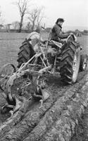 Ardfert Ploughing Match