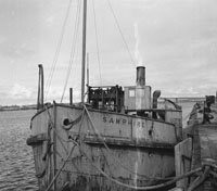 The SS Samphire