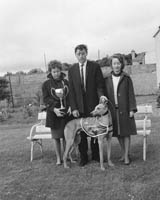 12th June 1964; Two women with P J Cronin and his greyhound 'Captain Gambler,' who won the Hannafin Cup and 350 Pounds prize money.