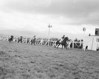 Tralee Races