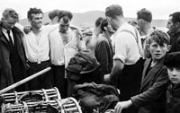 1953; A Group Of Men On Valentia Island Pier.