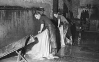 February 1954; Employees Of Tralee Tannery At Work