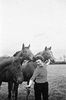 Joan Kennelly At Ballymagooley Stud