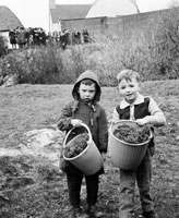 6th March 1964; A photo of Jerry Kennelly and another boy with shamrock in Listowel.