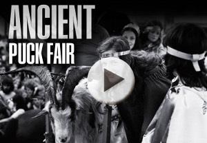 Ancient Puck Fair